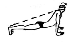 shank-prakshalana-miscarea-3a