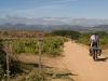camino de santiago - ciclism-biciclisti