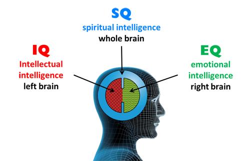 Dimensiunile inteligentei IQ-EQ-SQ